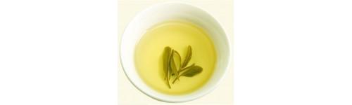 Geltonoji arbata
